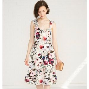 Amour Vera Blossom Windsor Silk Dress